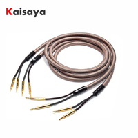 Hifi Speaker Cable Pure Copper Audio Speaker Wire with Gold plated Banana Plug T1191