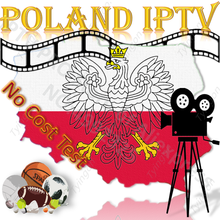IPTV Polonia polaco Polonia EPG Europa Global caja de TV inteligente PC estable ios Android M3U Enigma2 MG XXX código Panel revendedor HD FHD 4K(China)