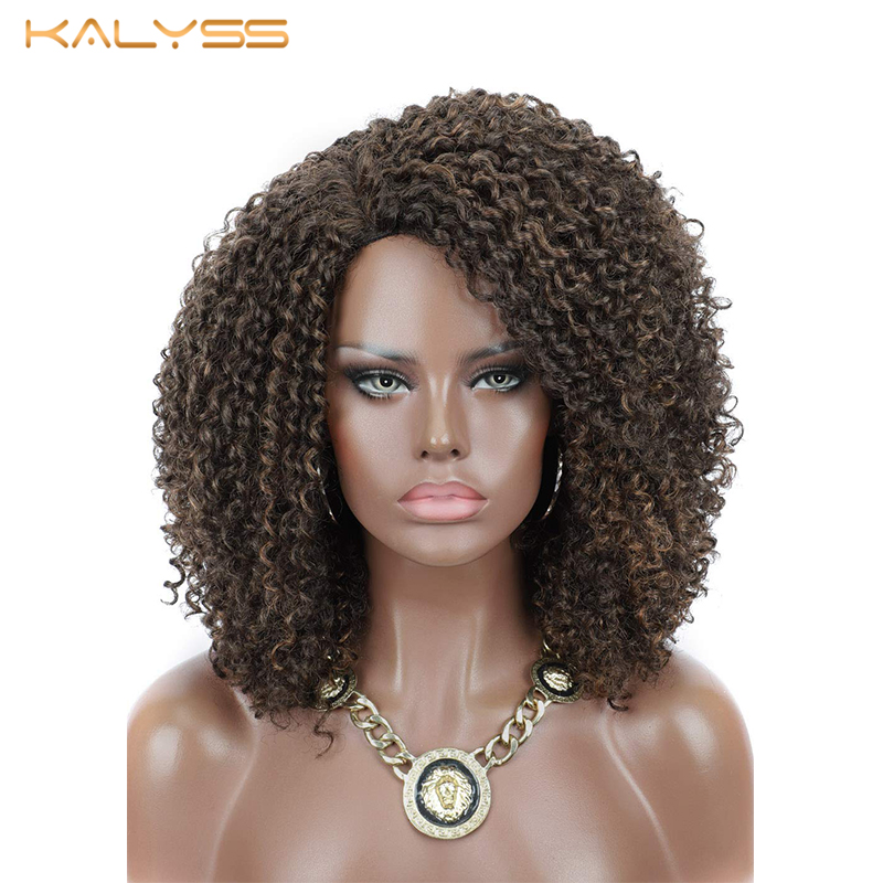 Kalyss 8 Inches Afro Kinky Curly Wigs for Women Synthetic Lace Front Wigs Heat Resistant Long Curly Wavy Wig False Hair