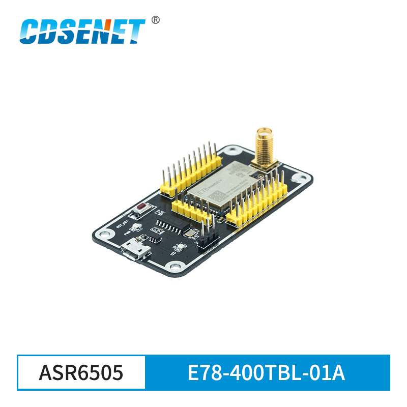 E78-400TBL-01A ASR6505 USB Test Board SoC Usb To TTL For ASR6501 LoRaWAN LoRa Module