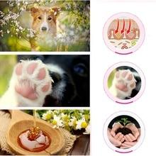 Лапа домашнего животного уход кремы щенок лапа собаки, кошки анти-растрескивание уход крем увлажняющая защита для ног безопасность здоровье домашних животных продукты