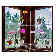 Półka okienna półka wisząca półka na rośliny stojak na rośliny kryty ogród wystrój okna półka na rośliny półka wisząca półki na rośliny tanie tanio CN (pochodzenie) Z tworzywa sztucznego Drop shipping