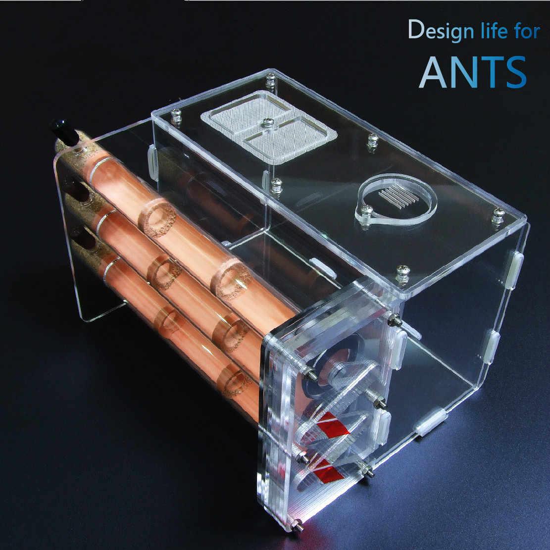 1 Pcs PET Ant Tiga 20*200 Mm Diameter Bambu Knot Ant House Vila Profesional Akrilik Sarang Ant Farm
