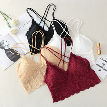 Lace Camisole Women V Neck Camis Top Sexy Tank Top Wireless Bralette Padded Bra Cropped Top Underwear velevet lace trimmed cropped tank top
