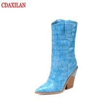 CDAXILAN new to womens boots Stone grain Microfiber Leather pointed toe Mid-calf super·high heel wedges winter