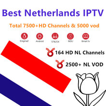 Netherlands Europe Pro IPTV Subscription UK German Arabic Dutch French Poland Portugal Smart TV IPTV M3U 9000 Live 1 year(China)