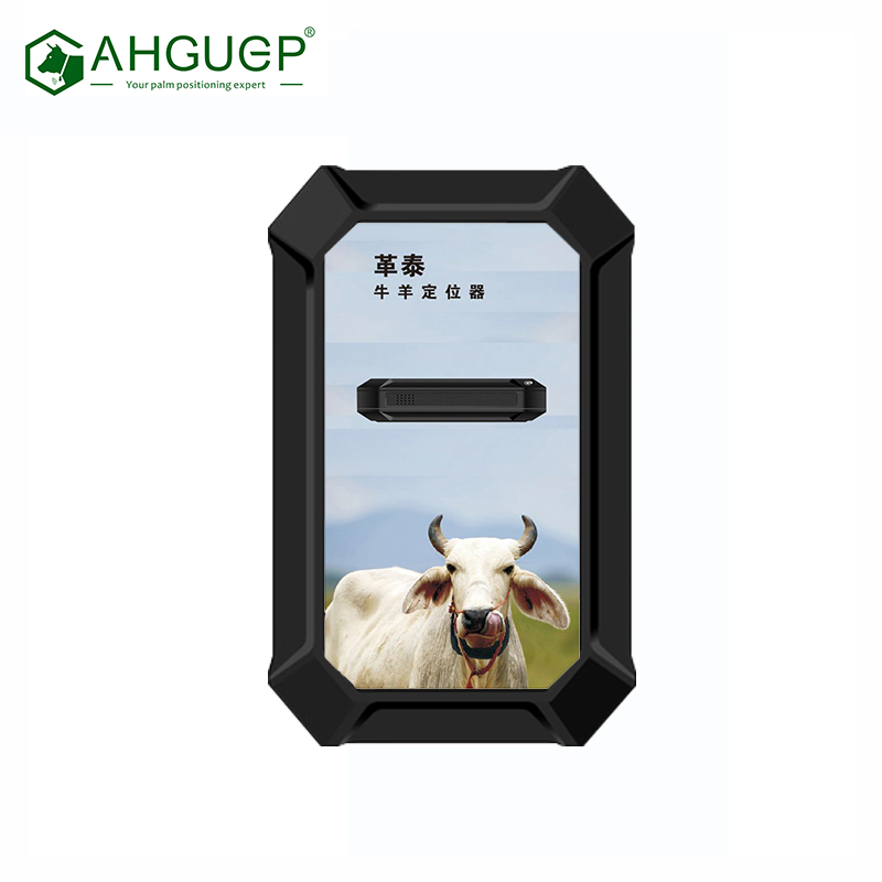 Goat GPS Tracker Collar Real time