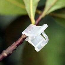 20шт% 2Fack пластик +растение поддержка мини прививка зажимы растения посев прививка зажим инструмент +для сада овощей цветов лозы кустов