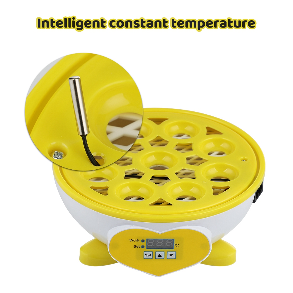 Mini 7 ovos incubadora automática de temperatura