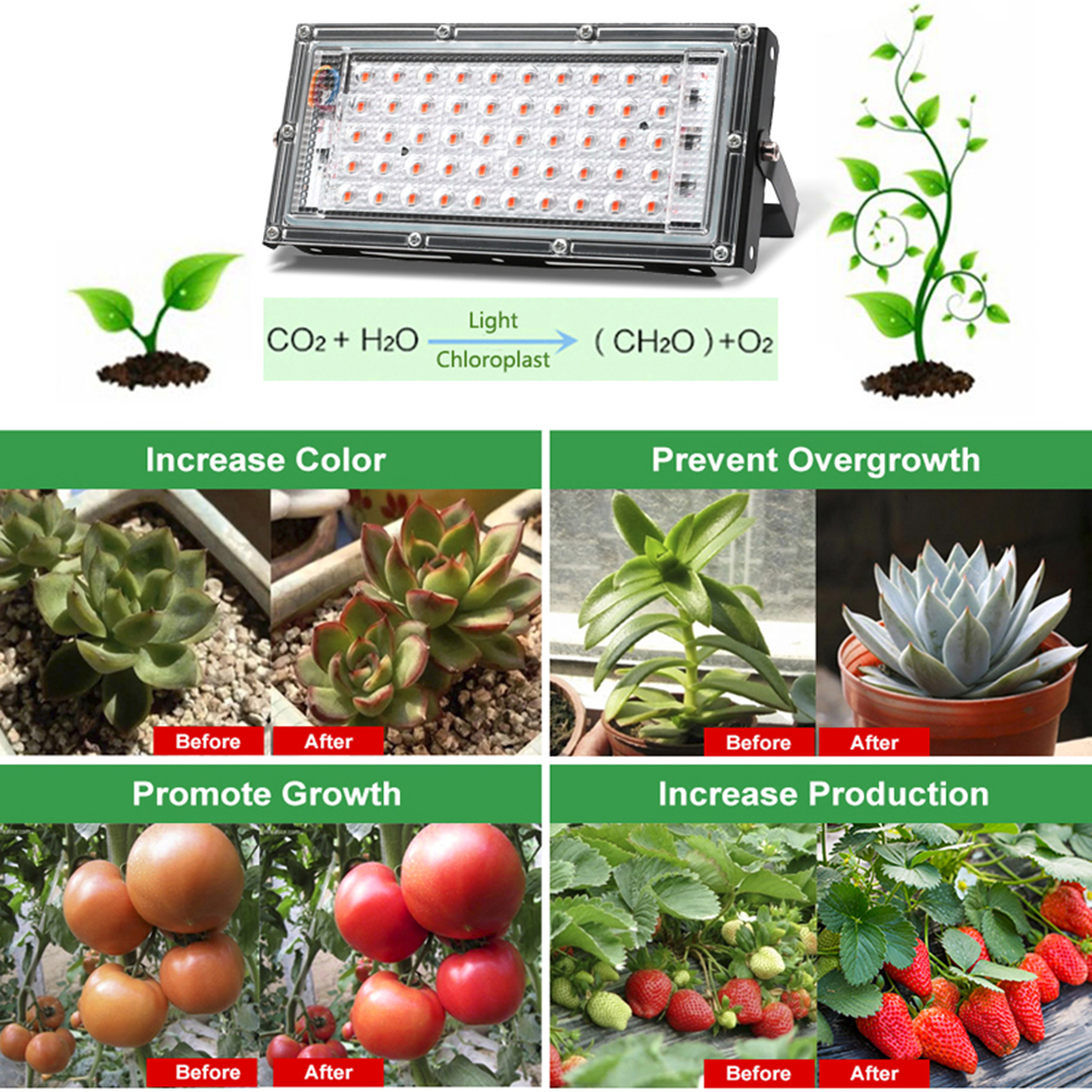 LED Grow Light PhytoLamp For Phyto Plants Tent Flower Seeding 50W AC 220V Full Spectrum Range Lamp Outdoor Floodlight Grow Box 2