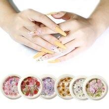 50 шт/кор засушенные цветы украшение для ногтей красочные натуральный