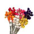 10pcs Dry Flower Nature Real Dry Berry Flowers DIY Floral Display Rabbit Grass Plant For Wedding Bouquet Home Room Party Decor