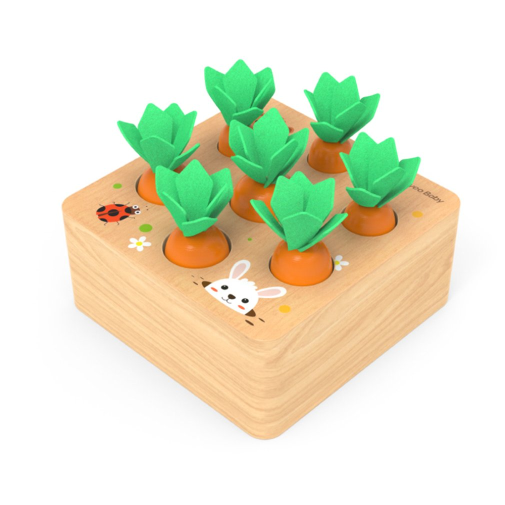 Kids Montessori Toys Block Set Alpinia Shape Matching Toys For Children Baby Wooden Size Cognition Carrot Game Early Education