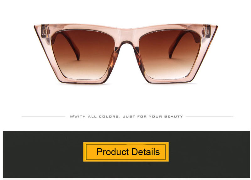 Fashion Cat Eye Sunglasses Women Brand Designer 2020 Vintage Candy Color Lens Sun Glasses Female Lady Sunglass Gradient Plastic (21)
