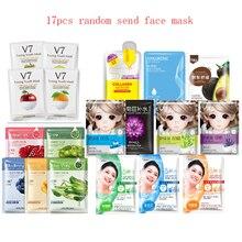 17Pcs Mixed HanChan Face Mask Plant Series Animal shaped Car