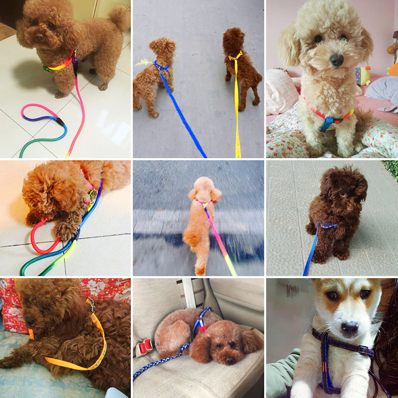 Dog Unscalable Rope Suspender Strap Dog Chain Unscalable Canine Thoracic Teddy Puppy Cat Pet Unscalable