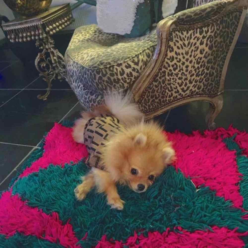 Moda pies ubrania Pet ubranko dla szczeniaka bluza z kapturem buldog francuski mops pluszowa kurtka płaszcz dla psów kot w zimie utrzymanie ciepła GKC03