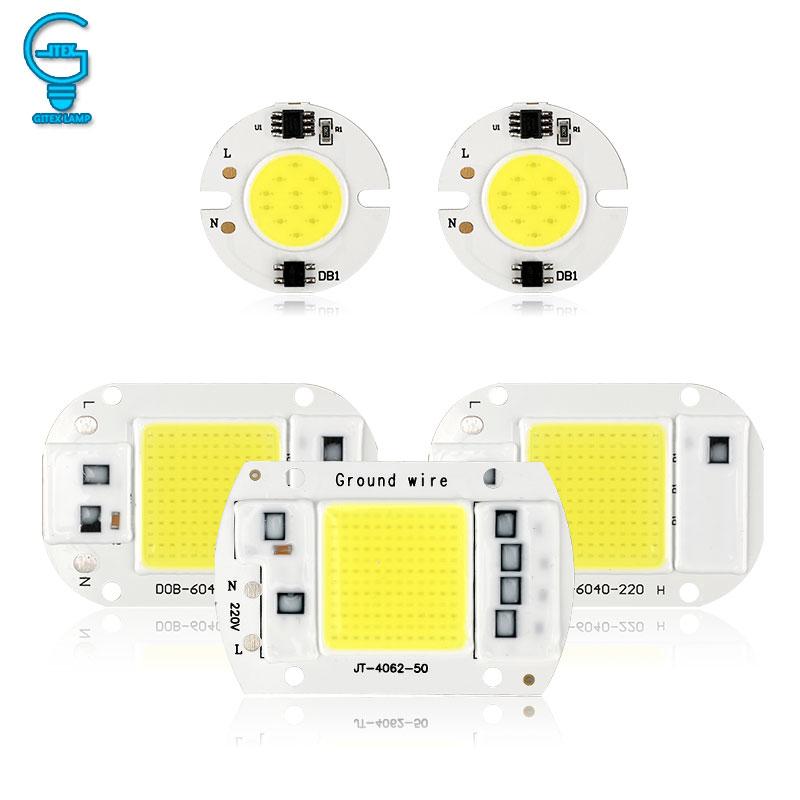 COB LED Bulb 10W 20W 30W 50W LED Lamp 220V 240V No Need Driver For  Flood Light Spotlight Lampada DIY Lighting