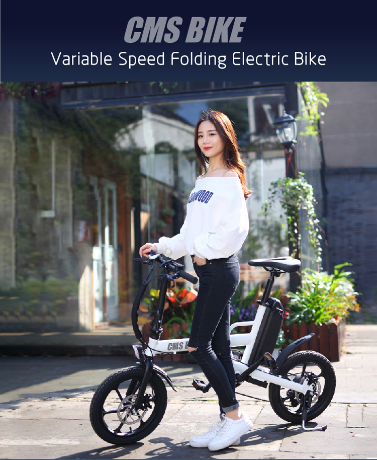 CE approved folding ebike 16 inch pedal assisted electric fold bike with 36V 13AH lithium battery 1