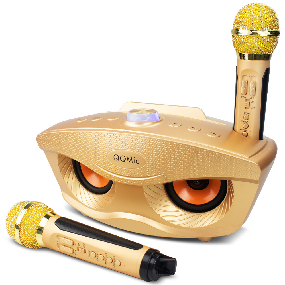 20W Karaoke Machine Portable PA Speaker System For Kids Adults With Lights Microphone Bluetooth V5.0 Toy Instrument