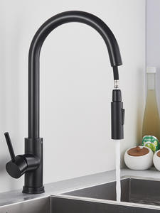 Black Kitchen Faucet...