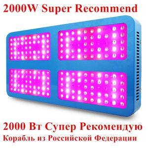 Image 3 - 300W 400W 600W 780W 800W Volledige Spectrum Led Grow Light Voor Greenhouse Indoor Plant En bloem Hoge Opbrengst Plant Groei Lamp