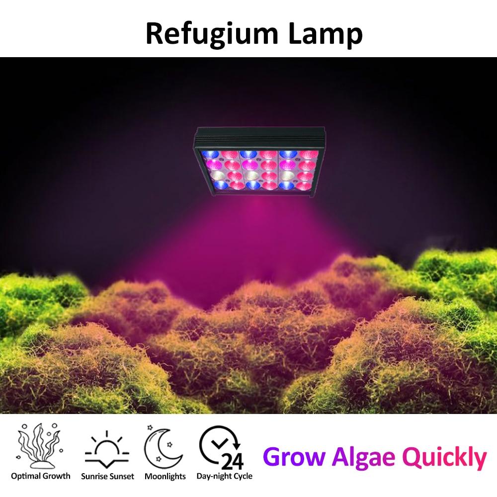 PopBloom Led Aquarium Beleuchtung Refugium Lampe für Algen Seetang Filter//Refuge