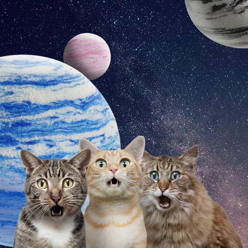 1 PC แมวของเล่น Interactive ของเล่นแมวเล่น Chew Rattle Scratch EVA Ball การฝึกอบรมสัตว์เลี้ยงอุปกรณ์ 3 สีแมวของเล่น