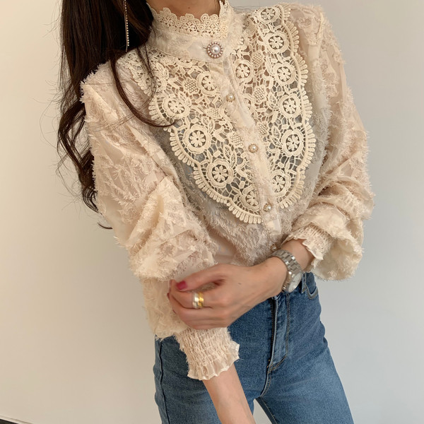 Hb3b6574409654921afda355bf637f4a4V - Spring / Autumn Korean Stand Collar Long Sleeves Crochet Lace Button Blouse