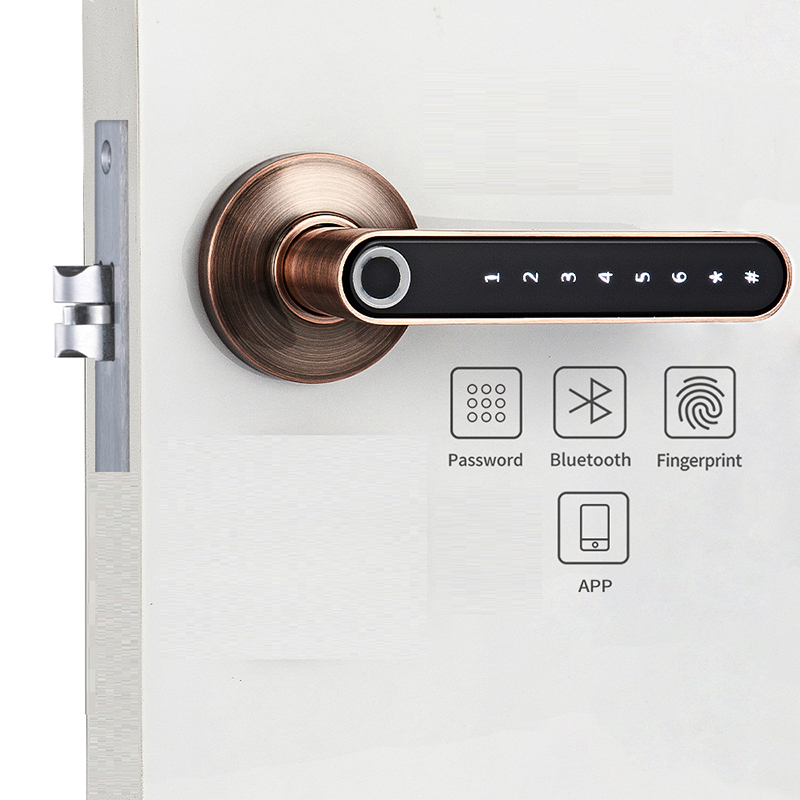 Smart Biometric Fingerprint Door Lock Code Phone APP Bluetooth One Time Code Dynamic Code Unlock Log Wooden Door Handle Lock