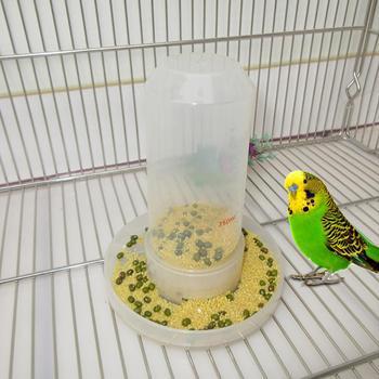 TPFOCUS Feeder Dual parrot birds Purpose Bird Feeder Automatic Water Drinker for Parrots Birds Chassis diameter 13 cm