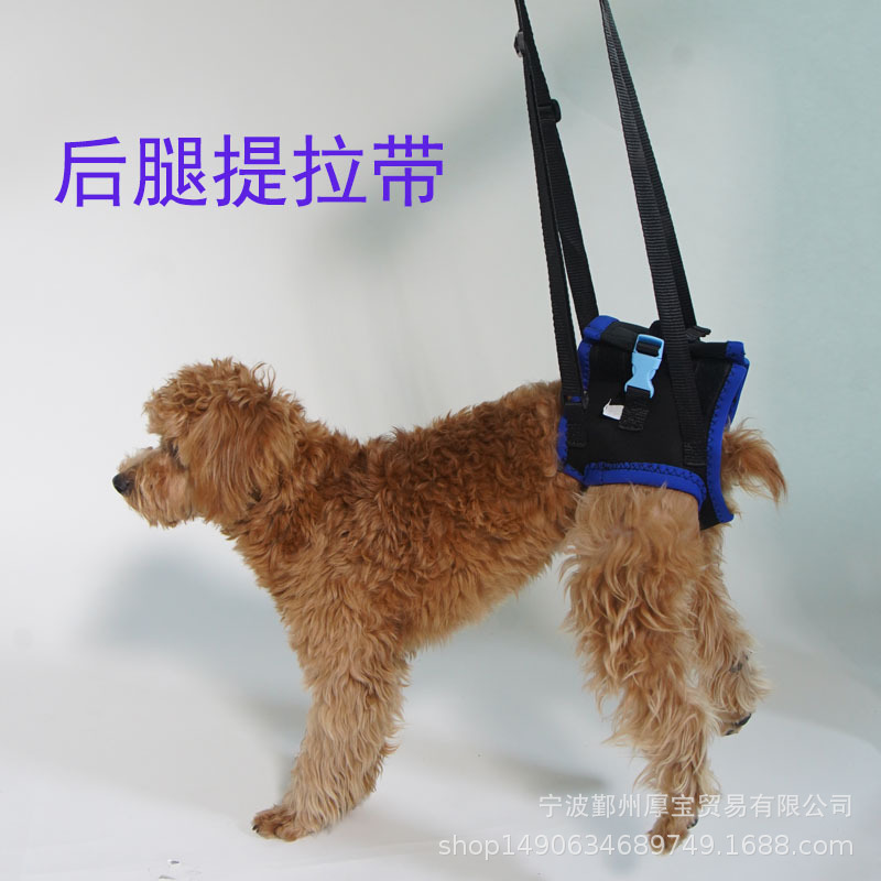 Gao Ling Quan Years Old Dog Hind Legs Carrying Belt Disability Injured Aged Dog Auxiliary Belt Suspender Strap Hind Limb Rehabil