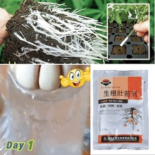 Rapid Rooting Powder Water Soluble Strong Rooting Growth Hormone Root Seed Germination Plant Flowers Seeds Fertilizer For Plants