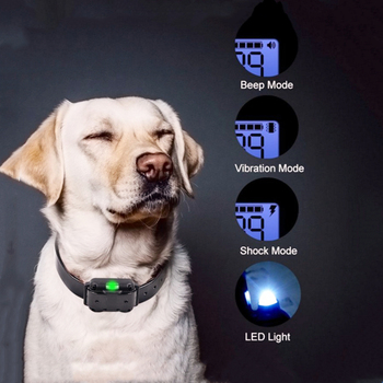 Electric Training Collar for dog with LCD Display Pet Remote Control 800m Waterproof Rechargeable agility dog equipment new 800m electric dog training collar remote control waterproof rechargeable with lcd display for all size shock vibration sound