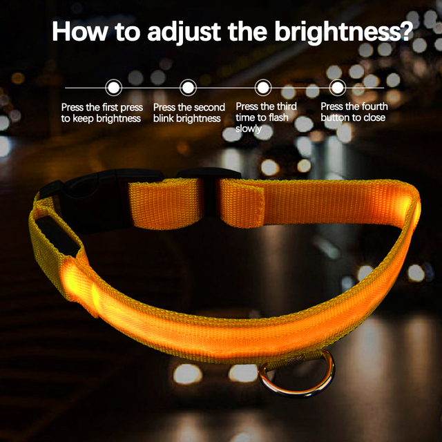 LED Glowing Pet Collar - USB Rechargeable 5 COLORS Puppy Glow  3