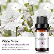 Musk Sandalwood Vanilla essential oil sets Famous brand For