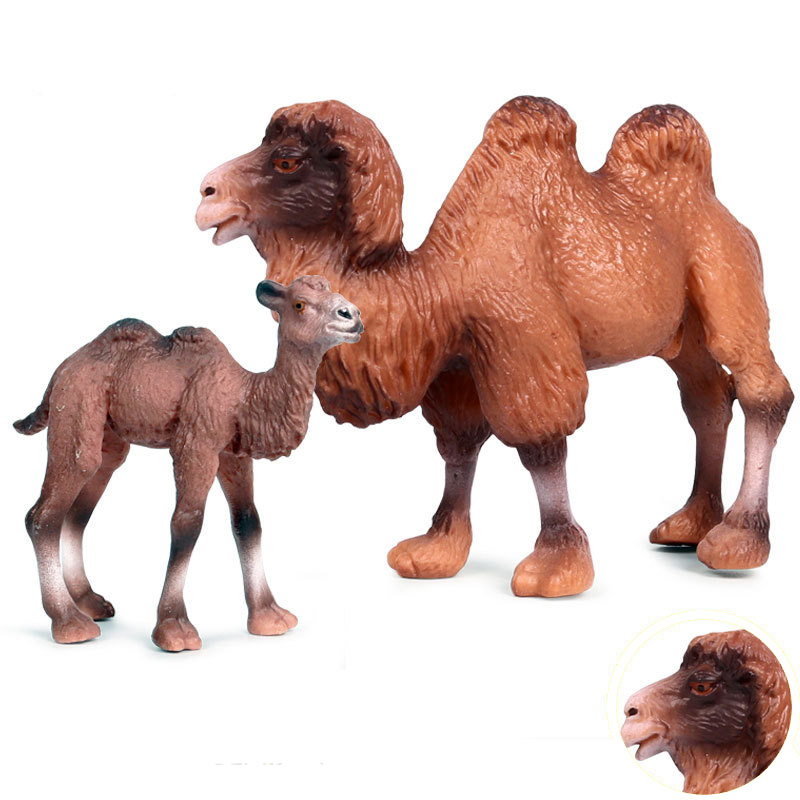 6 Kinds Solid Simulation Camel  Animal Figure Collectible Toys Wild Animal Action Figures Kids Plastic Cement Toys