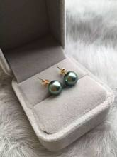 Genuine 9mm Real South Sea gray Pearl Earrings 14K Solid Yellow Gold(China)