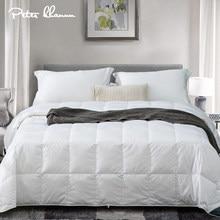 Peter Khanun – couette légère en Duvet blanc 100%, couette d'été, avec insertion, couverture rafraîchissante, coque ptc, pour lit double, Queen, King, taille 022