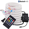RGB Neon Light Night Light Lamp IP67 Waterproof 5050 RGB LED Strip Indoor Outdoor Lighting 220V 110V