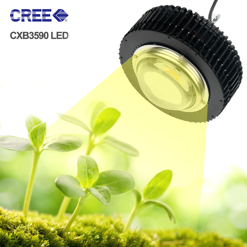 Grow Tent COB Led Grow Light 3500K CXB3590 CXB2530 Full Spectrum Phyto Lamp For Plants Indoor Seedlings Veg And Flowers Fitolamp