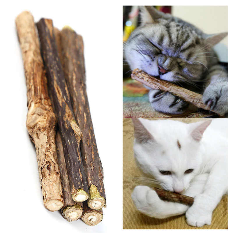 5PCS Pure Natural Actinidia Polygama Pet Cat Toy Molar Toothpaste Branch Cleaning Teeth Silvervine Cat Snacks Sticks