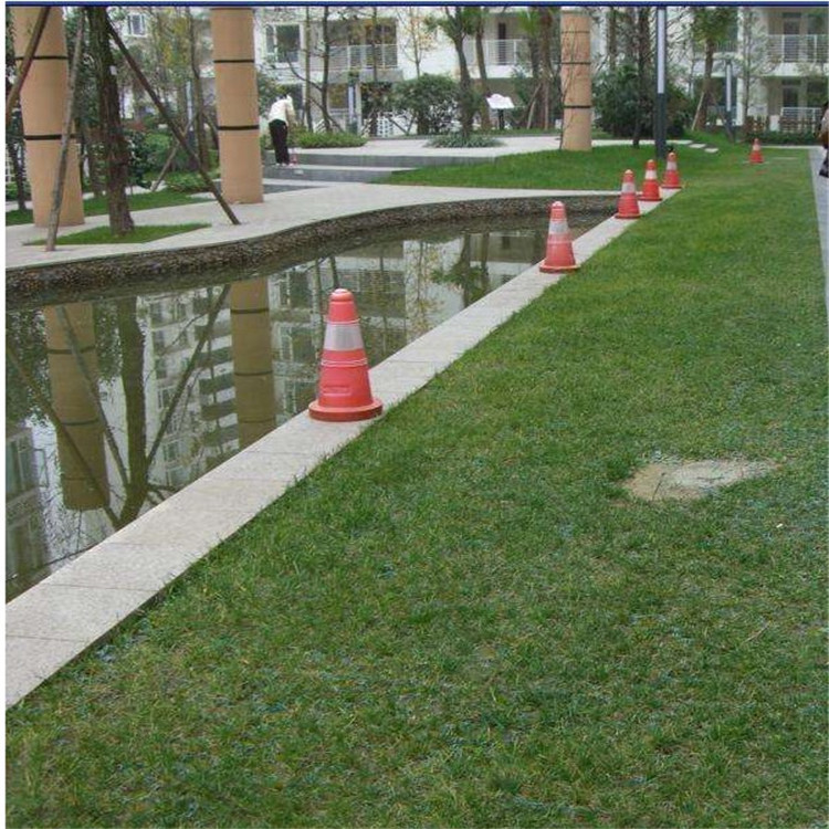 Manufacturers Delivery Grass Planting Cell Parking Depot Firefighting Sidewalk Plastic Lawn Grass Brick Zhi Cao Ban Slope Protec
