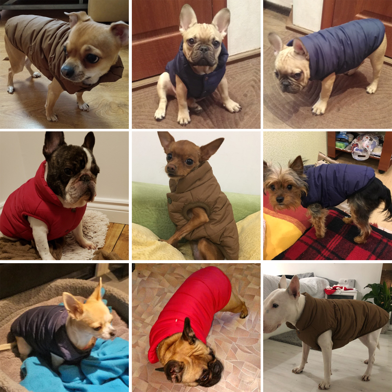 Fleece Dog Jacket in Button Closure Design For Small/Medium/Large Dogs 1