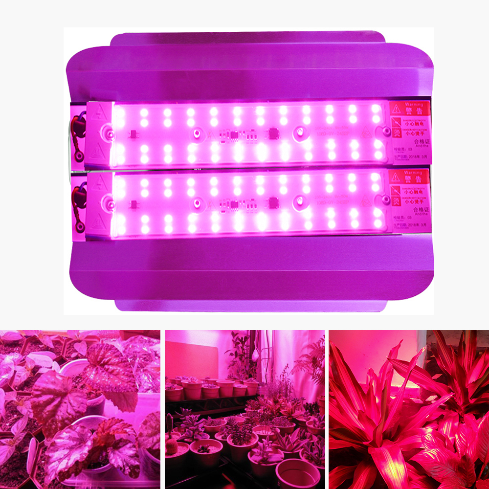 COB LED Grow Light Full Spectrum 50W 100W Plant Light Outdoor IP65 Waterproof Grow Tent Light Indoor Phytolamp Cultivation Lamps