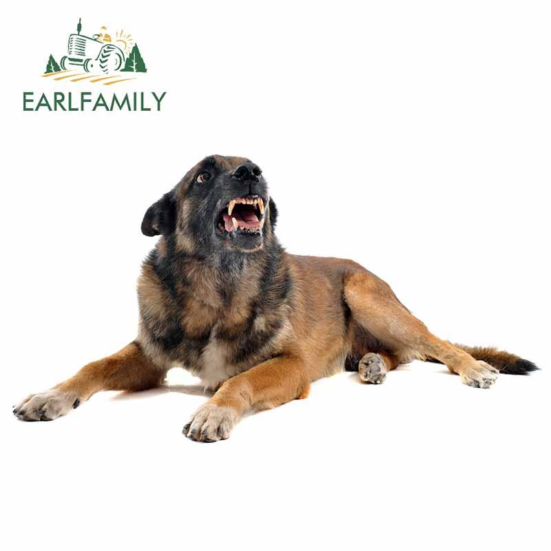 EARLFAMILY 13cm x 7.2cm for Fraud Affiliate Dog Funny JDM Car Stickers DIY Custom Printing Animals Body for Car Waterproof Decal