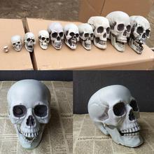 Украшения на Хэллоуин, искусственный череп, голова, модель, пластик, Череп, кости, страшный скелет, вечерние украшения, статуи
