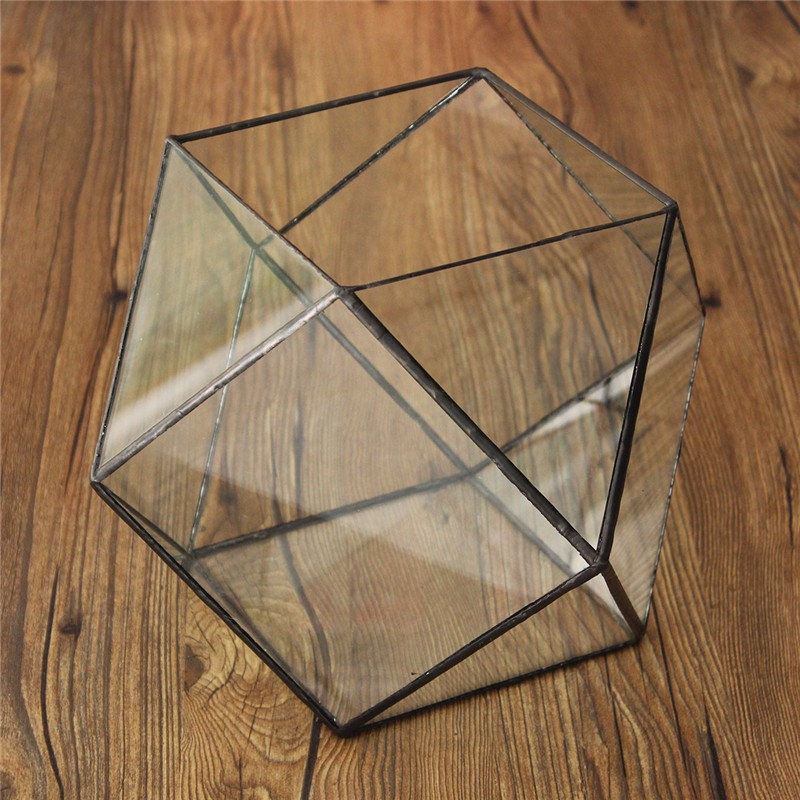 Verre géométrique Terrarium boîte bricolage présentoir table succulente Air plante fougère mousse Pot planteur - 3