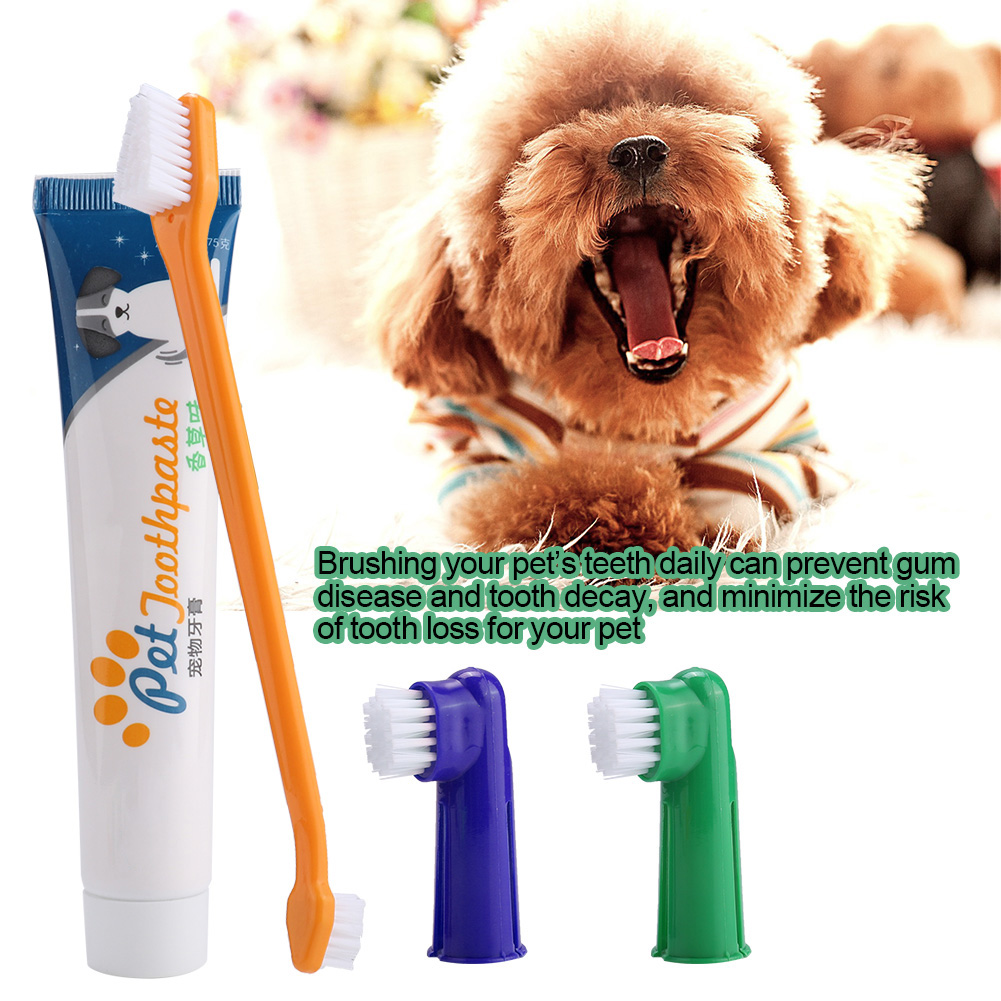 4Pcs Pet Dog Cat Toothbrush Toothpaste Set Dental Care Dual Headed Toothbrush Finger Brush Dogs Toothbrush With Non-Slip Handle image