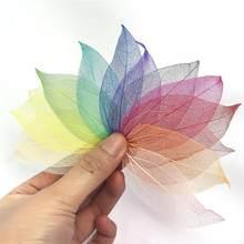 100pcs/Lot Natural Leaf Vein Dried Leaf Resin Filler Filling Decoration Material For DIY Epoxy Resin Crafts Jewelry Making